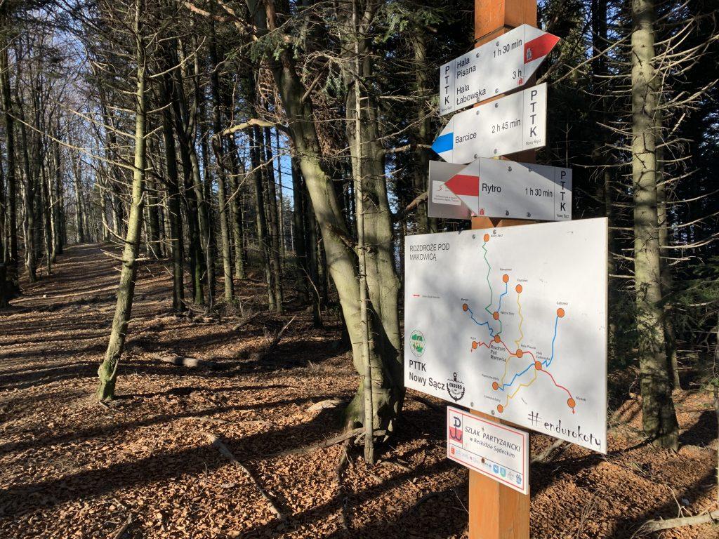 Cyrla - Krzyżówka szlaków: Cyrla, Makowica, Nawojowa