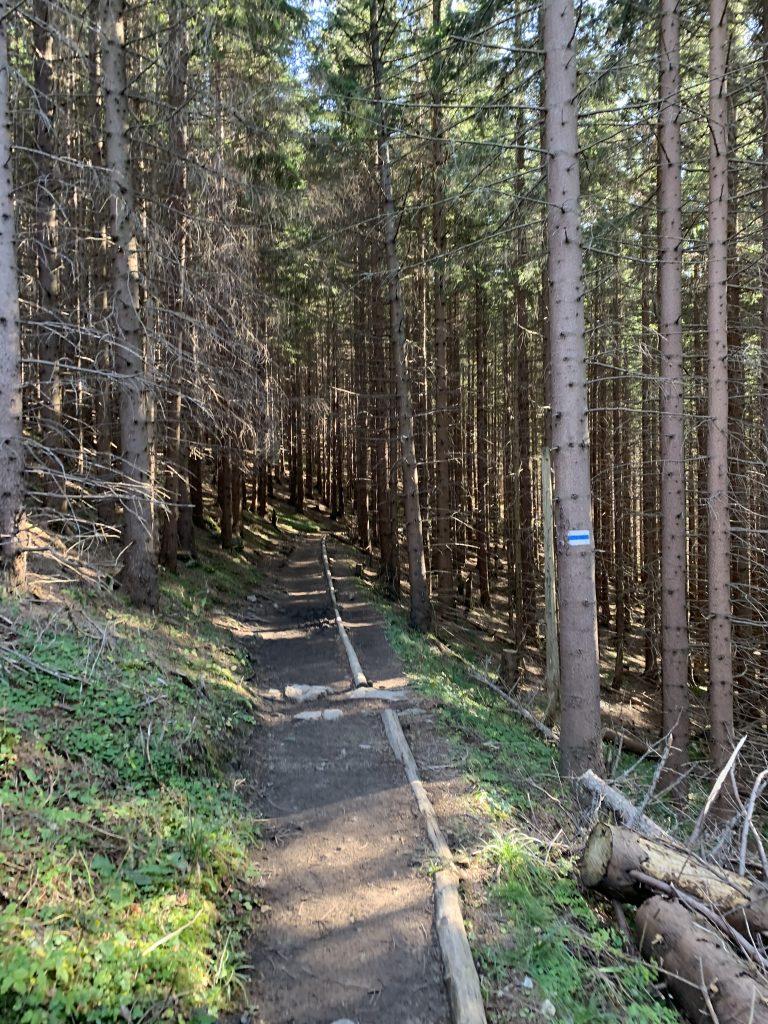 Czerwone Wierchy - Niebieski szlak na Małołączniak