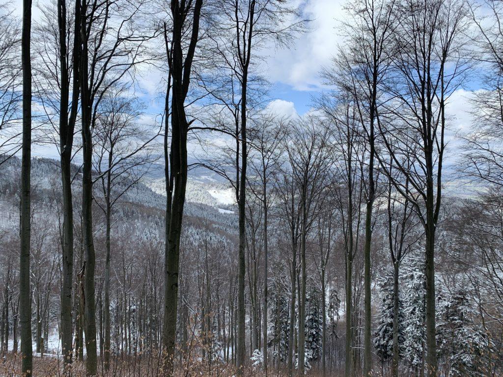 Przehyba - Ostatnie uroki zimy