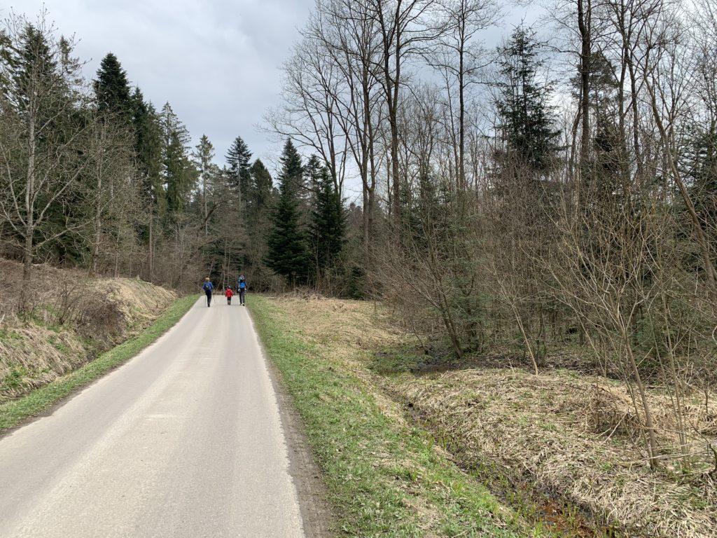 Kopaniny - Droga dojściowa do ścieżki