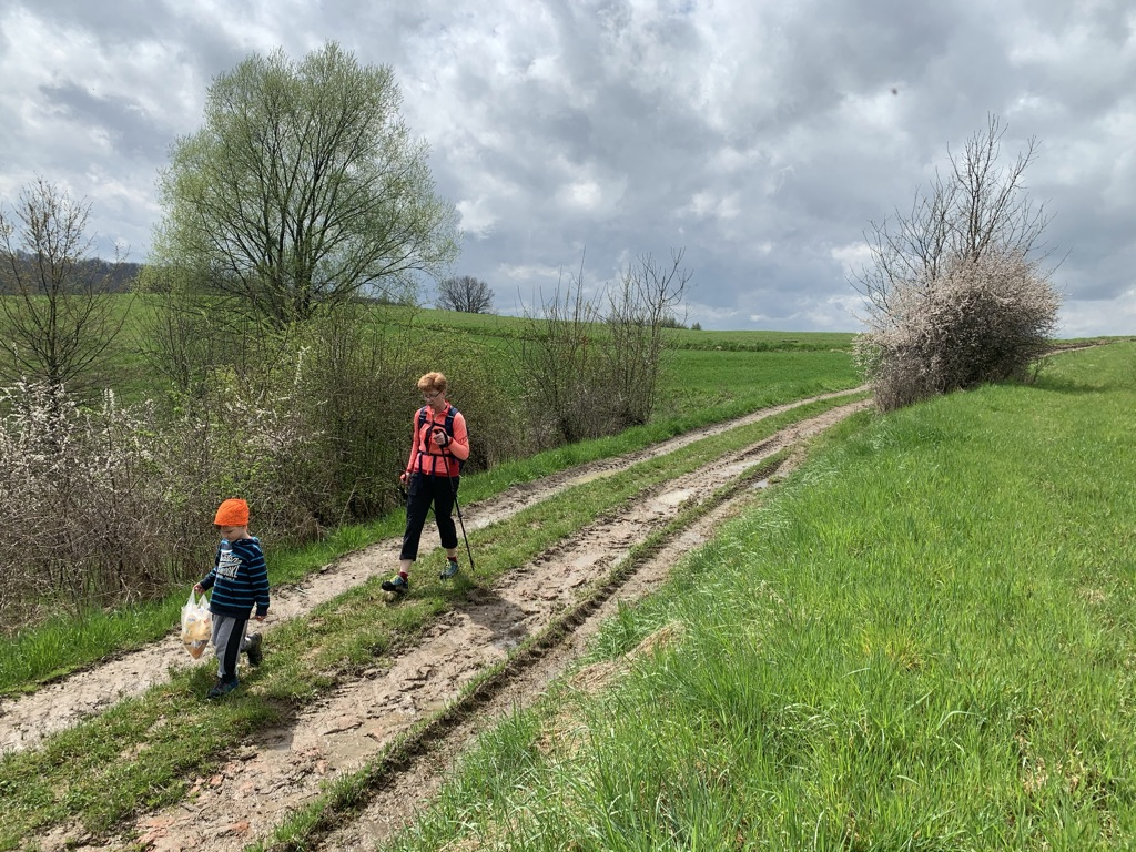 Ścieżka do Ralla - Przestrzeń otwarta