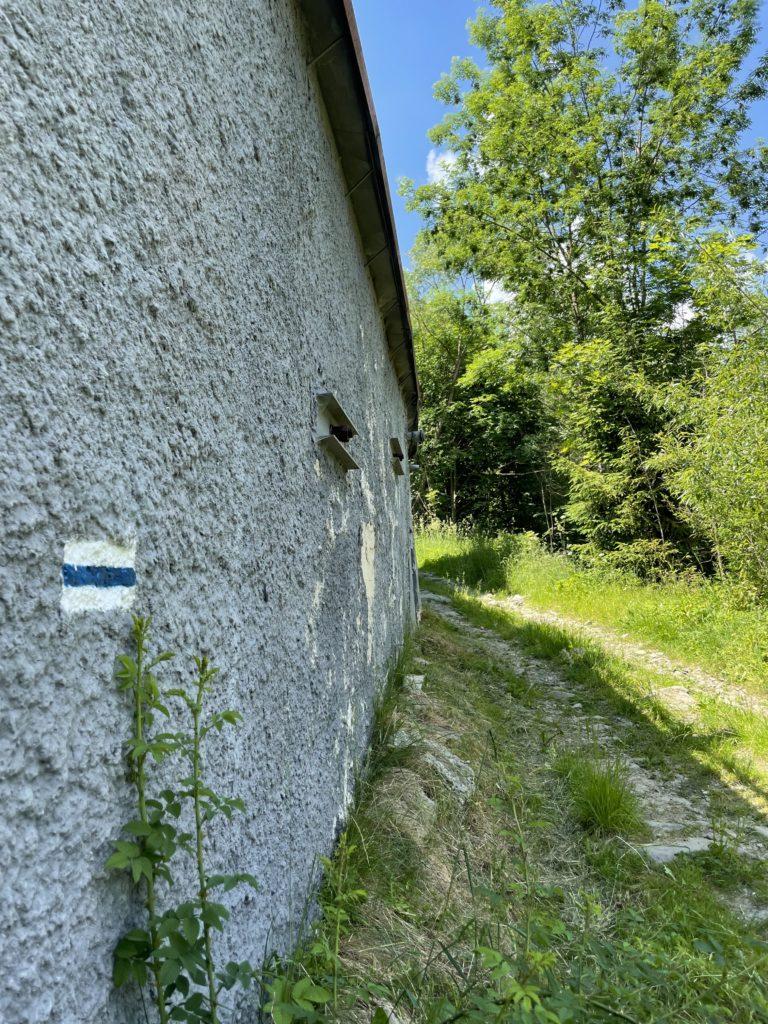Jałowieś - Nie ma to jak niebieskie szlak :)